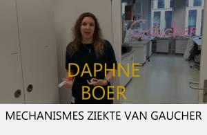 Daphne Boer - button