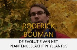 Roderick button